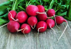 radish low calorie for weight loss